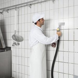 Limpiadoras y aspiradoras de vapor